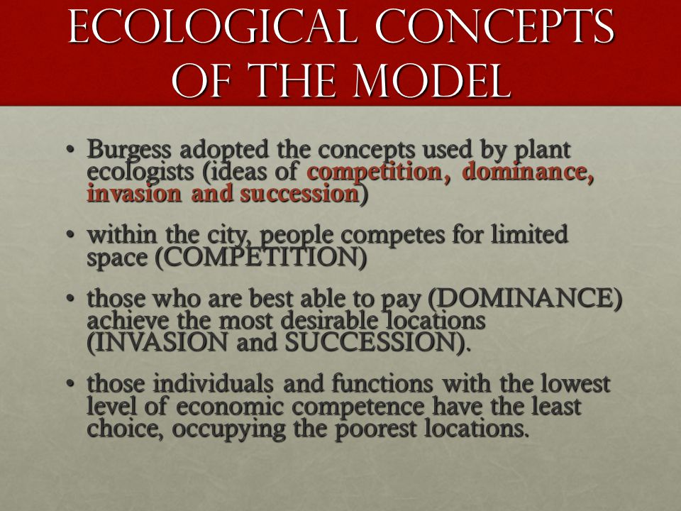 ECOLOGICAL Concepts of the model