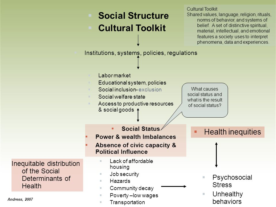 What causes social status and what is the result of social status