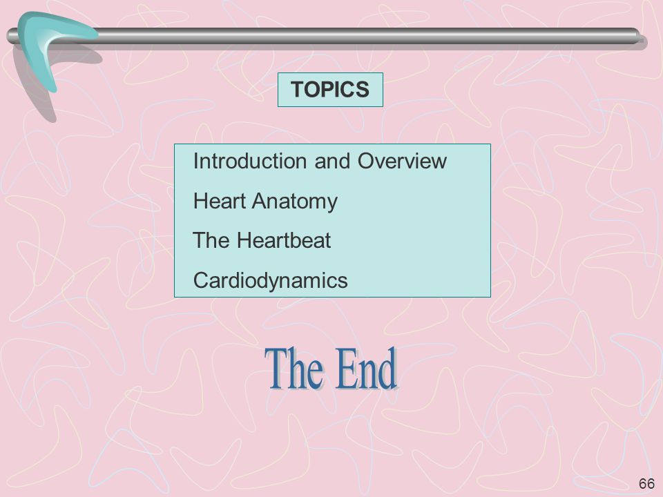 The End TOPICS Introduction and Overview Heart Anatomy The Heartbeat