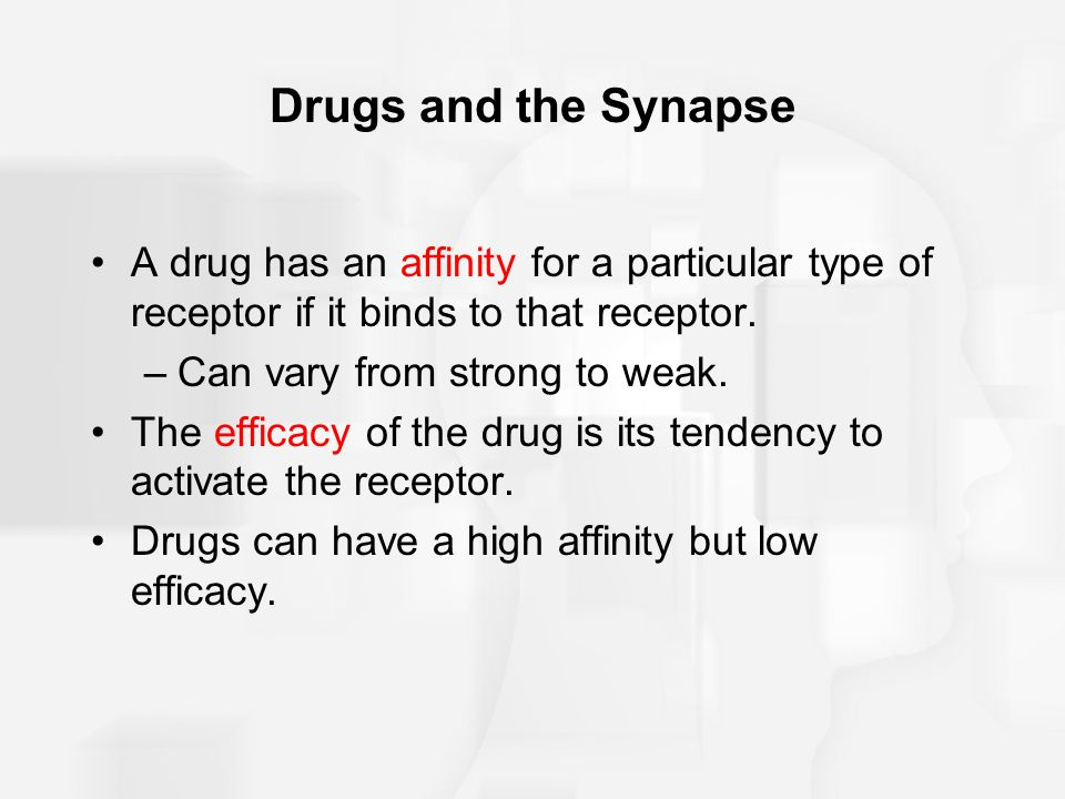 Drugs and the Synapse A drug has an affinity for a particular type of receptor if it binds to that receptor.