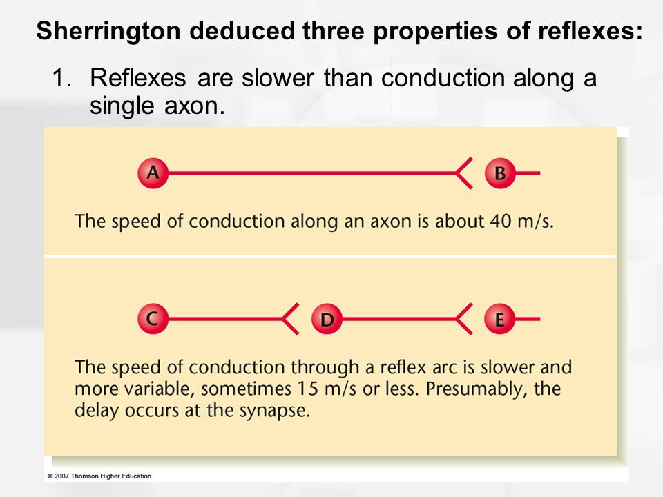 Sherrington deduced three properties of reflexes: