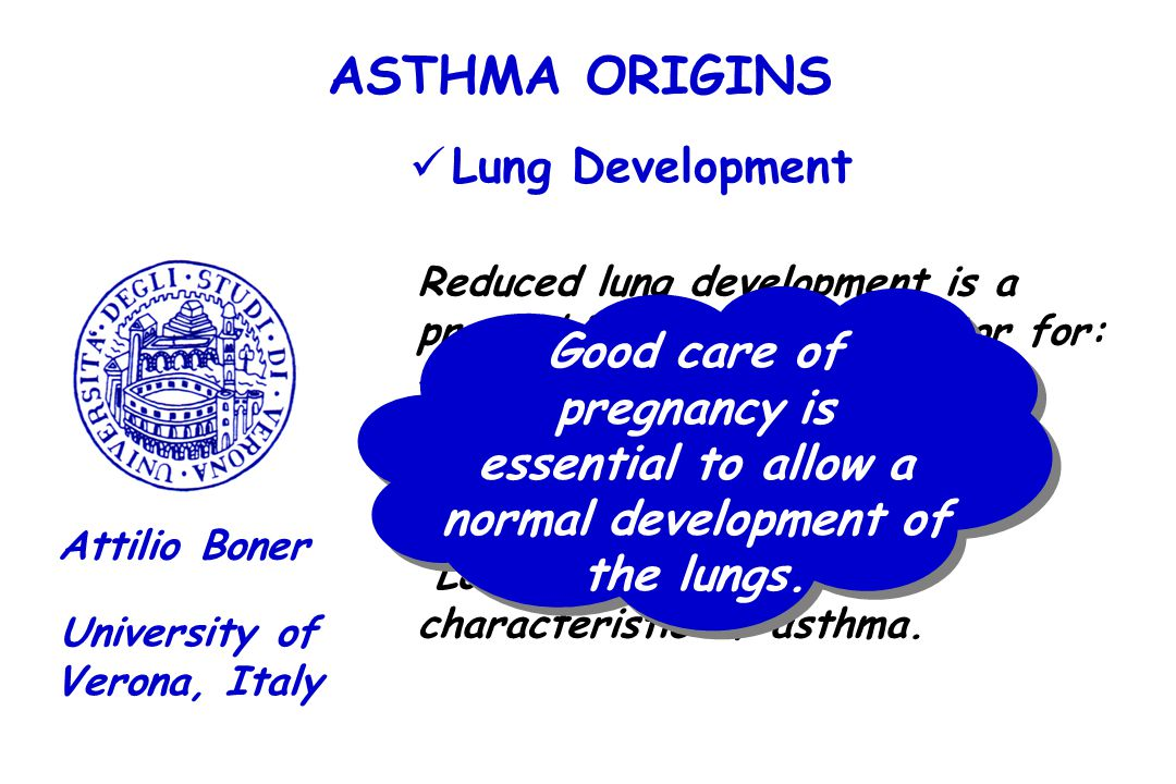 ASTHMA ORIGINS Lung Development Good care of pregnancy is