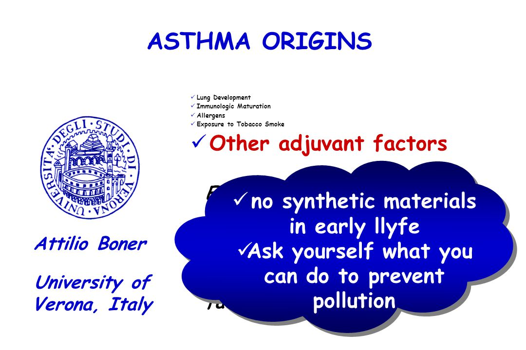 ASTHMA ORIGINS Other adjuvant factors