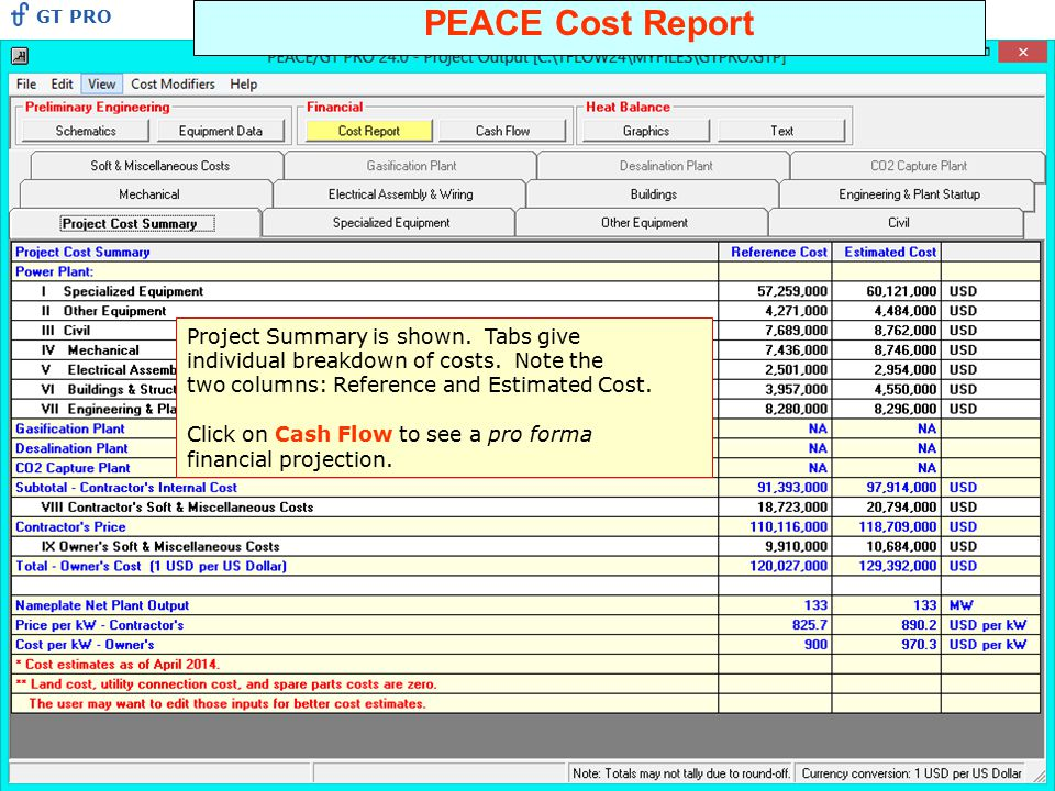 PEACE Cost Report Project Summary is shown. Tabs give