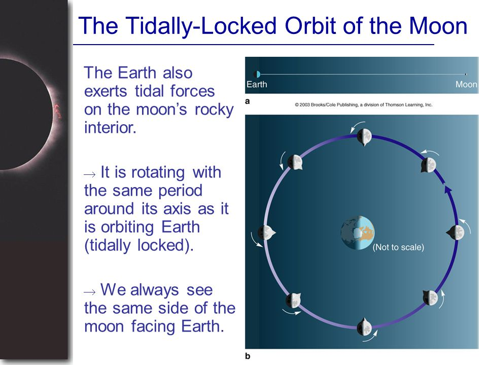 The Tidally-Locked Orbit of the Moon
