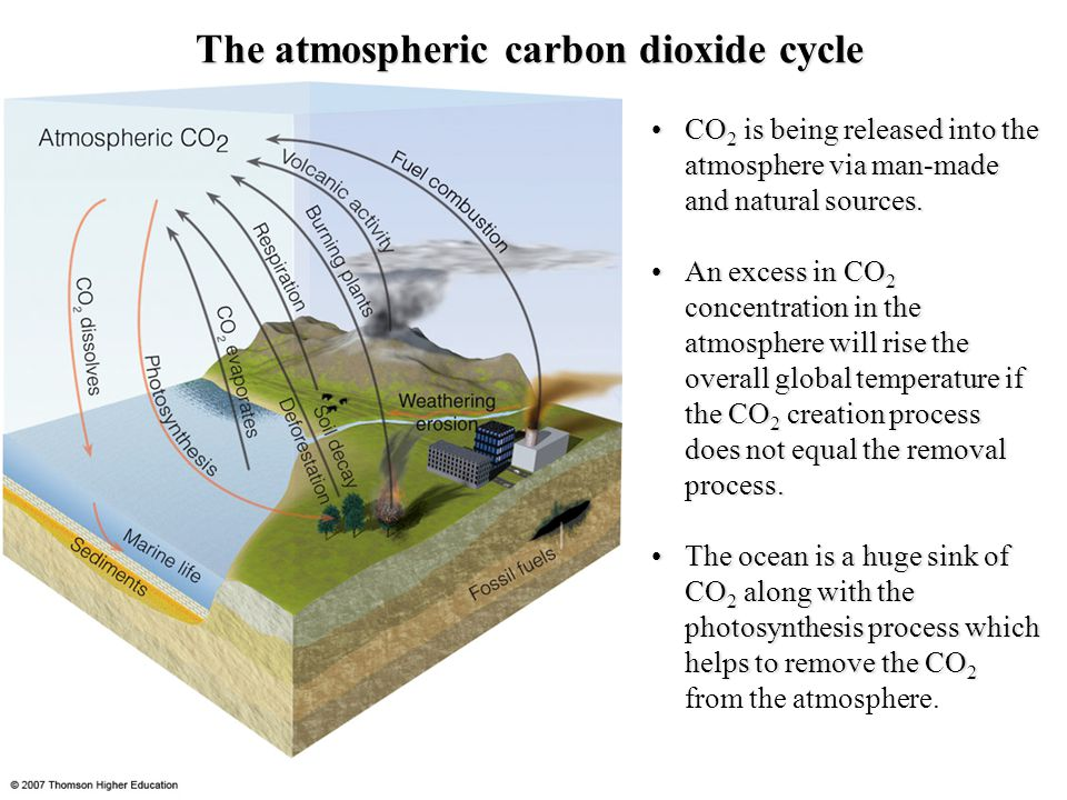 The atmospheric carbon dioxide cycle