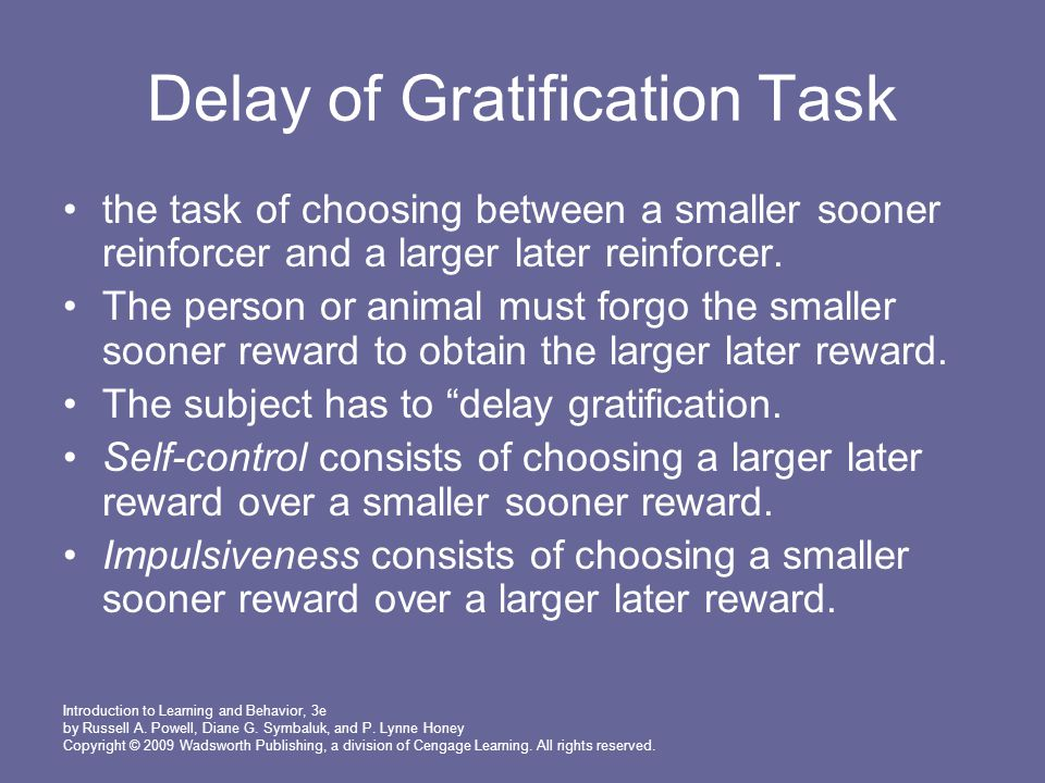 Delay of Gratification Task