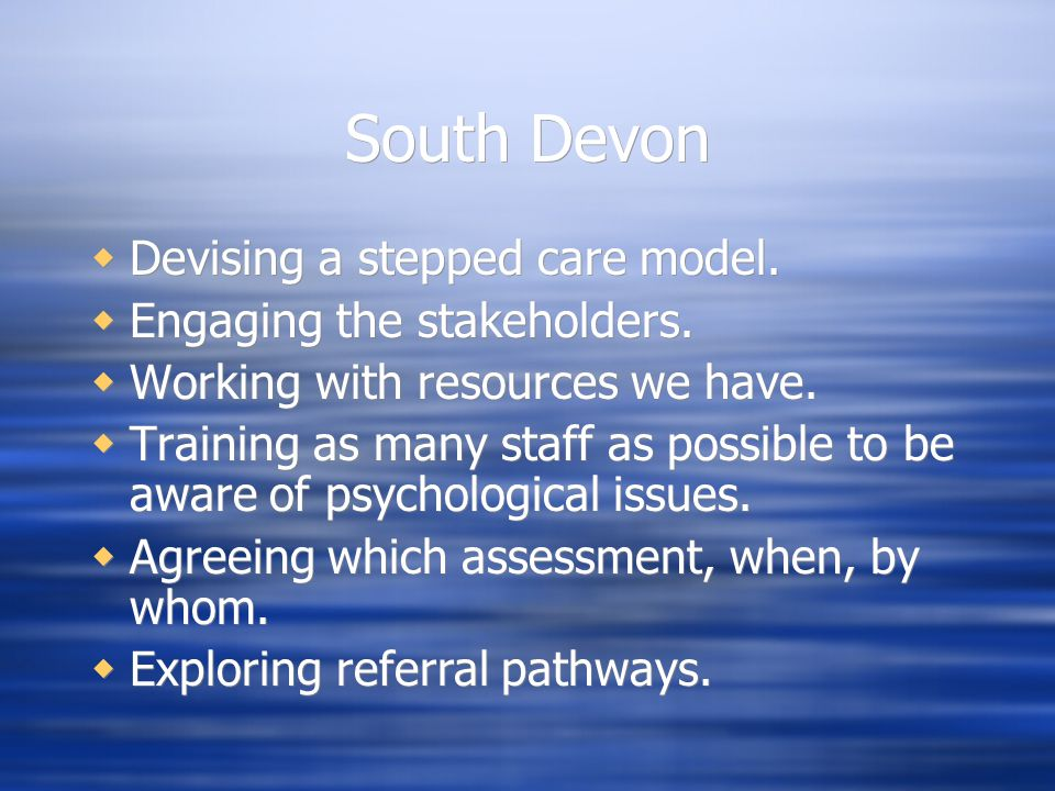 South Devon Devising a stepped care model. Engaging the stakeholders.