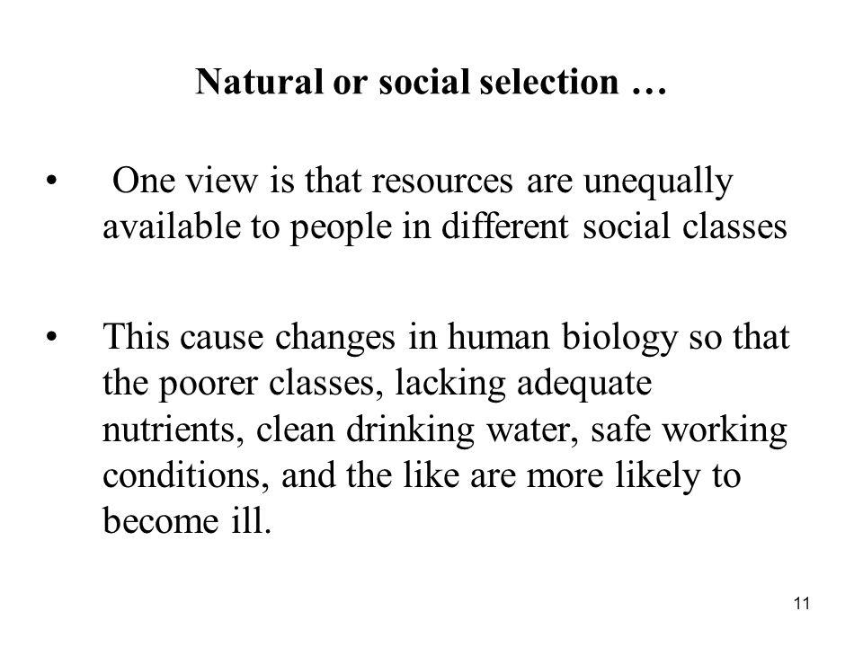 Natural or social selection …