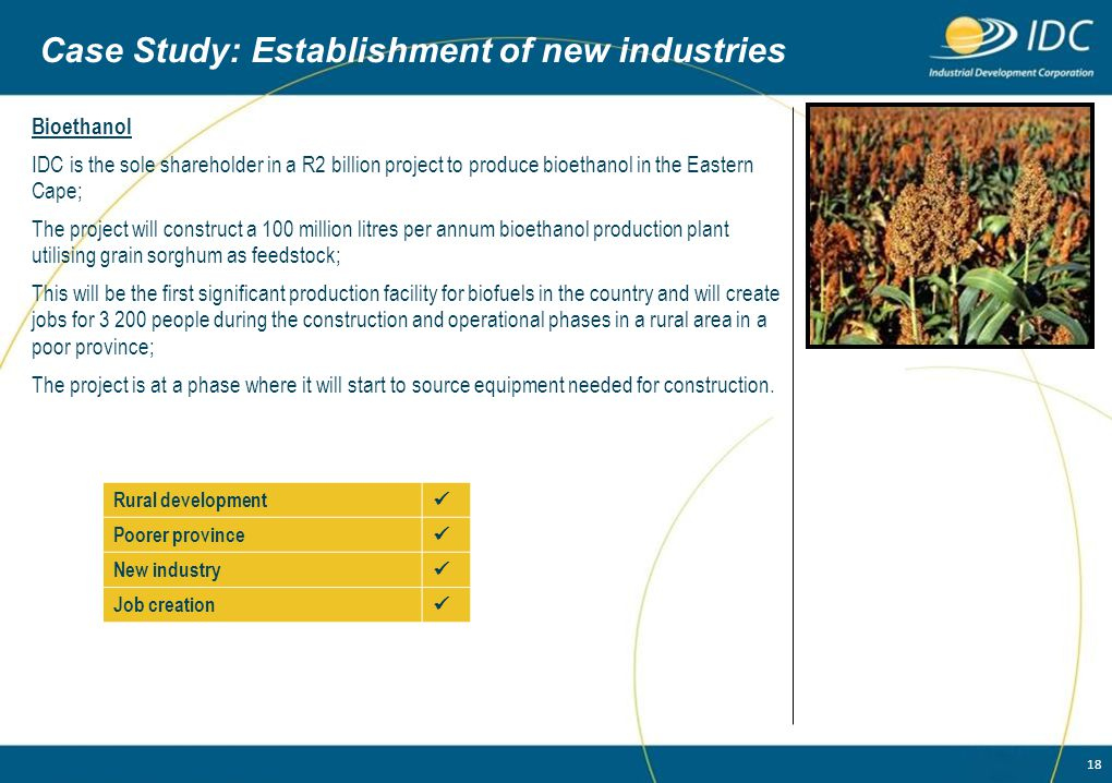 Case Study: Establishment of new industries
