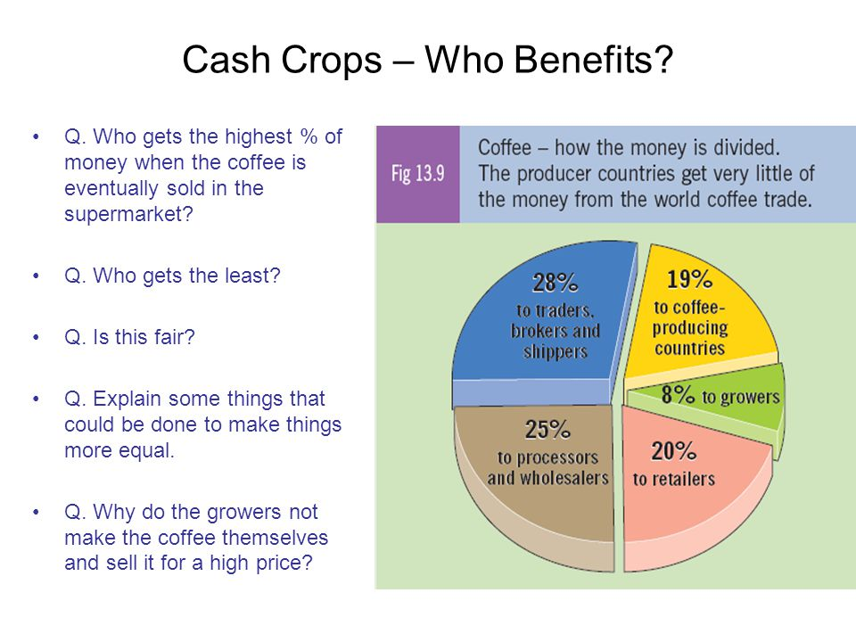 Cash Crops – Who Benefits