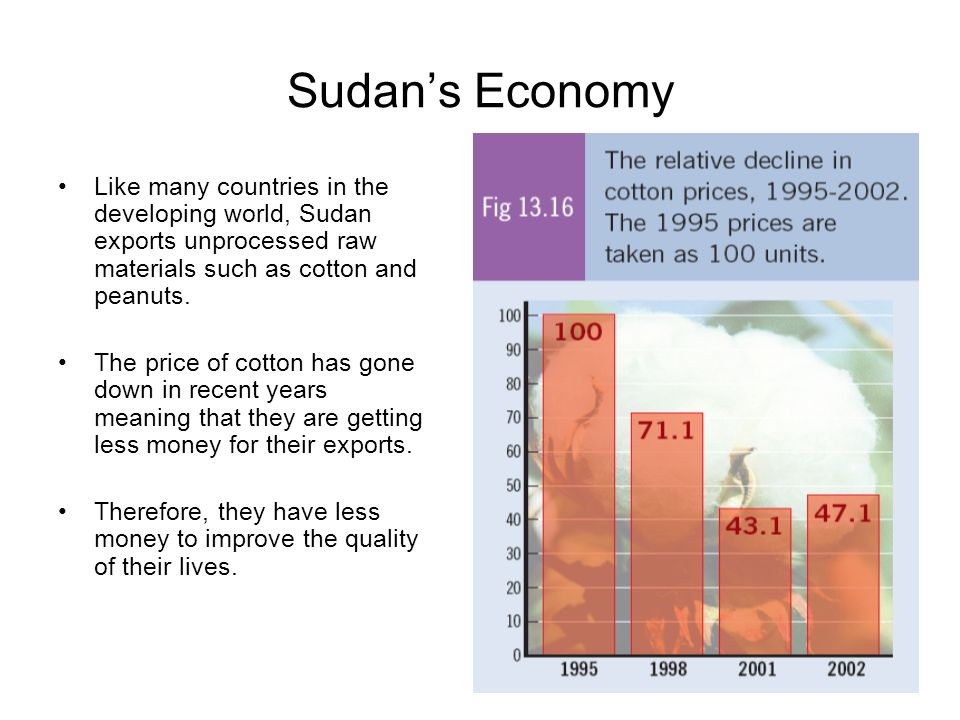 Sudan's Economy Like many countries in the developing world, Sudan exports unprocessed raw materials such as cotton and peanuts.