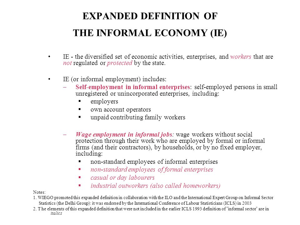 EXPANDED DEFINITION OF THE INFORMAL ECONOMY (IE)