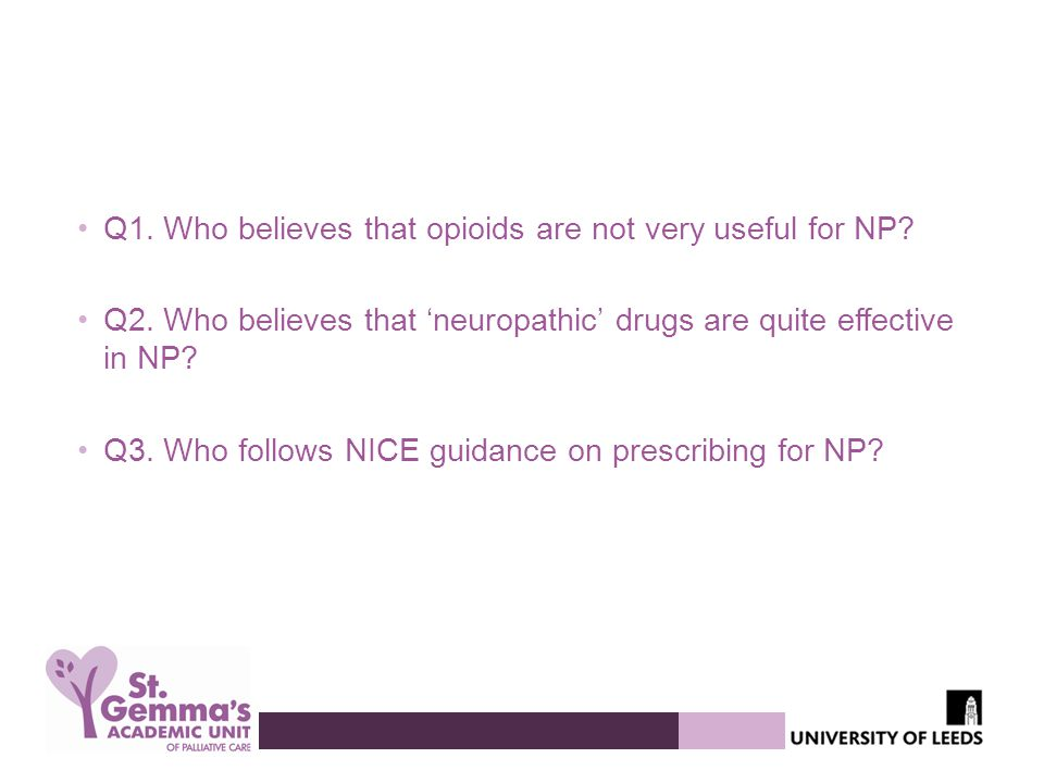Q1. Who believes that opioids are not very useful for NP