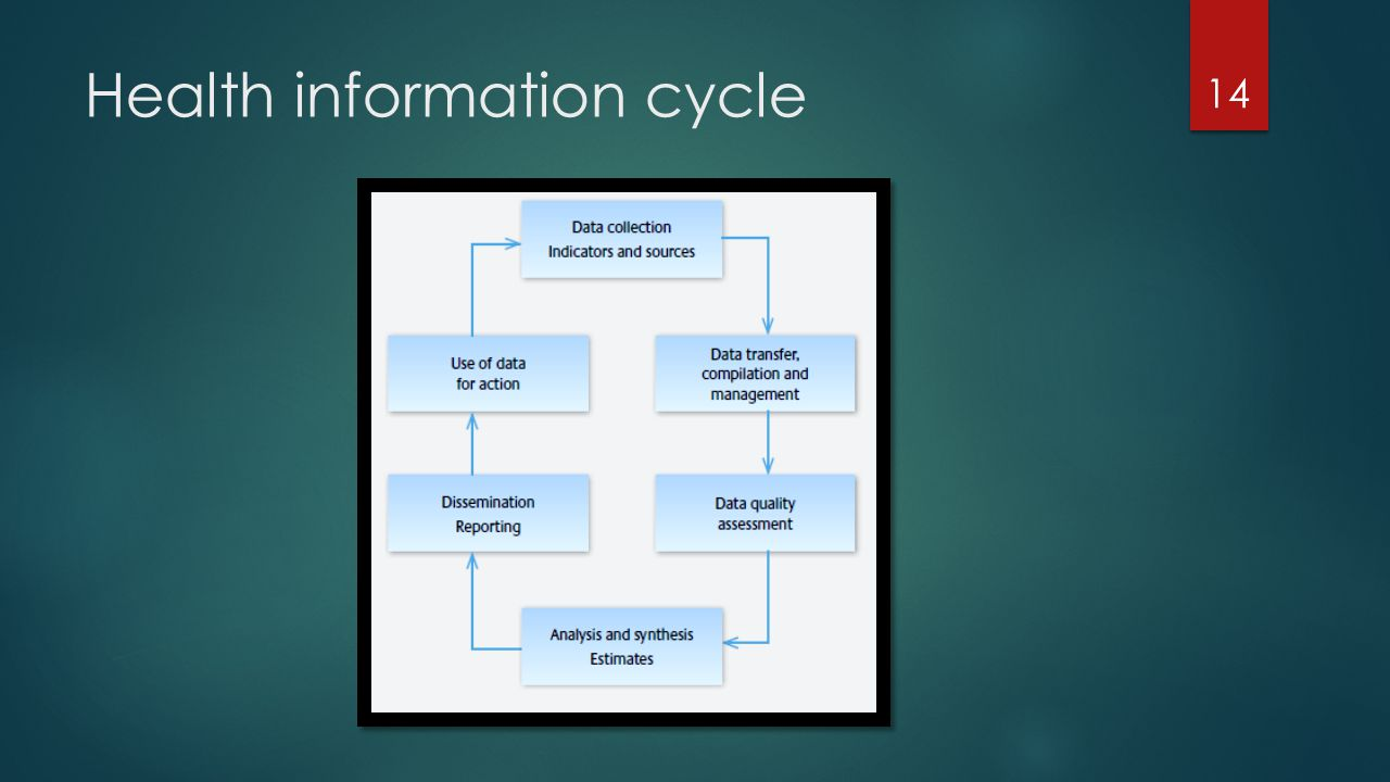 Health information cycle
