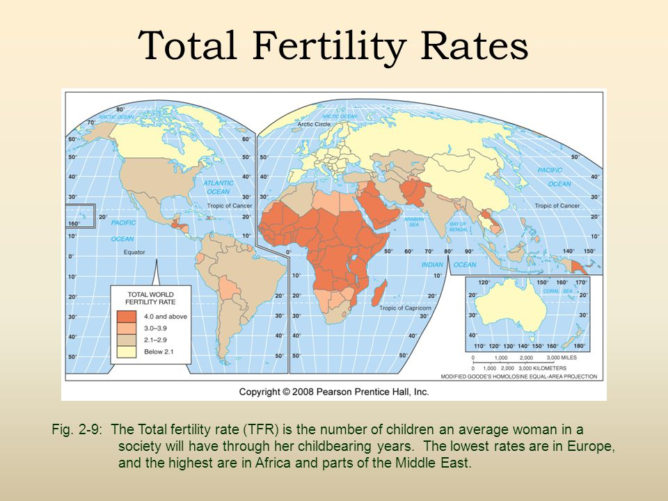 Total Fertility Rates