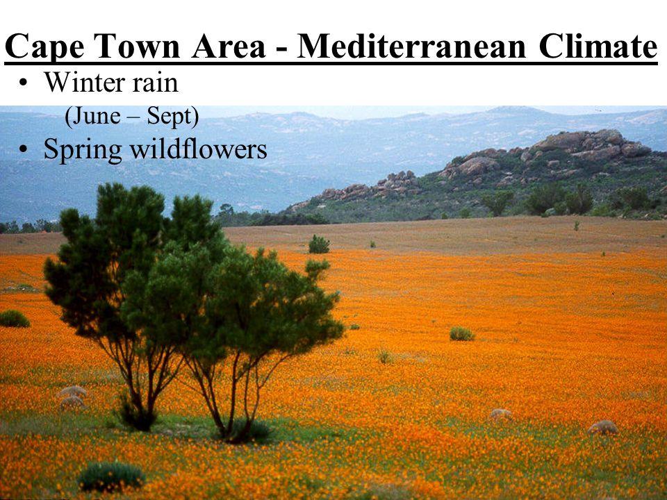 Cape Town Area - Mediterranean Climate