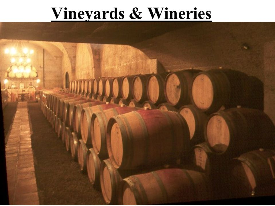 Vineyards & Wineries