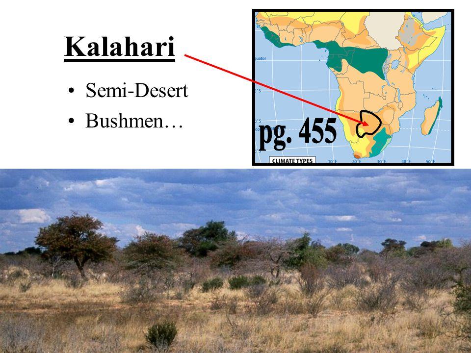 Kalahari Semi-Desert Bushmen… pg. 455