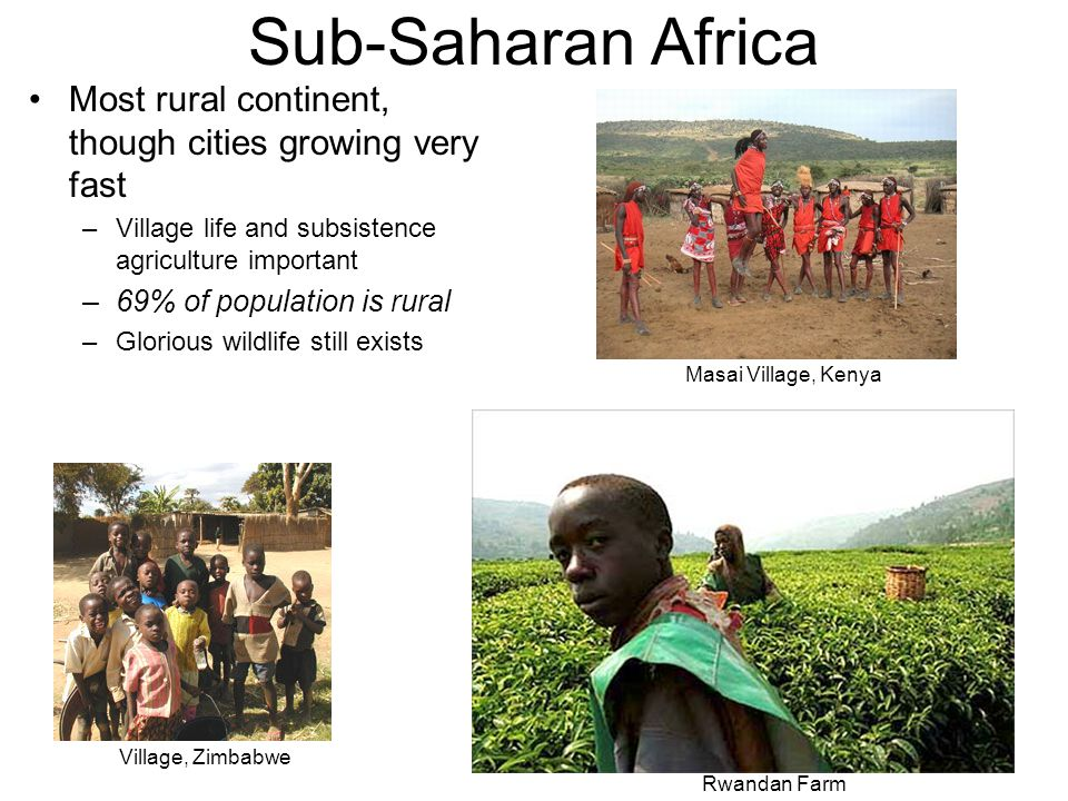 Sub-Saharan Africa Most rural continent, though cities growing very fast. Village life and subsistence agriculture important.