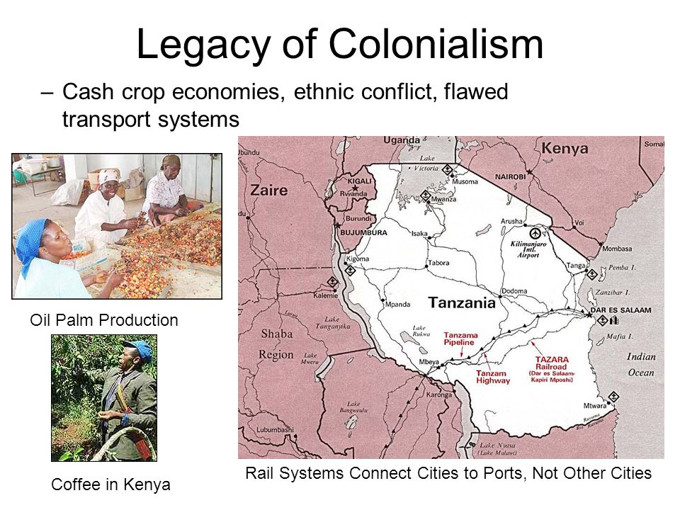 Legacy of Colonialism Cash crop economies, ethnic conflict, flawed transport systems. Oil Palm Production.