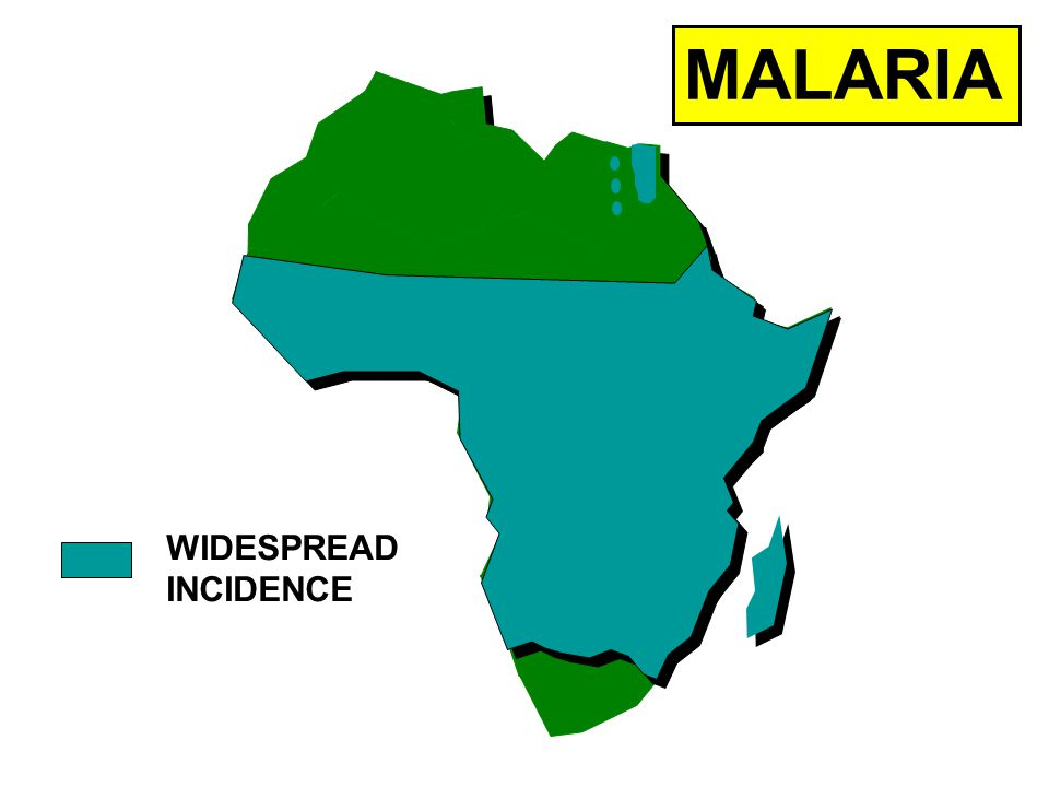 MALARIA WIDESPREAD INCIDENCE