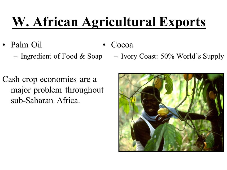 W. African Agricultural Exports