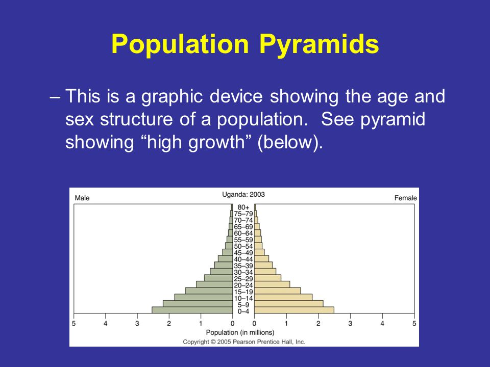 Population Pyramids This is a graphic device showing the age and sex structure of a population.