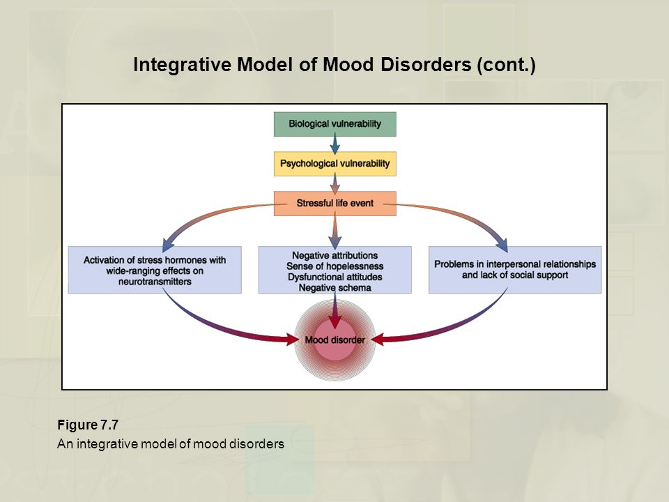 Integrative Model of Mood Disorders (cont.)