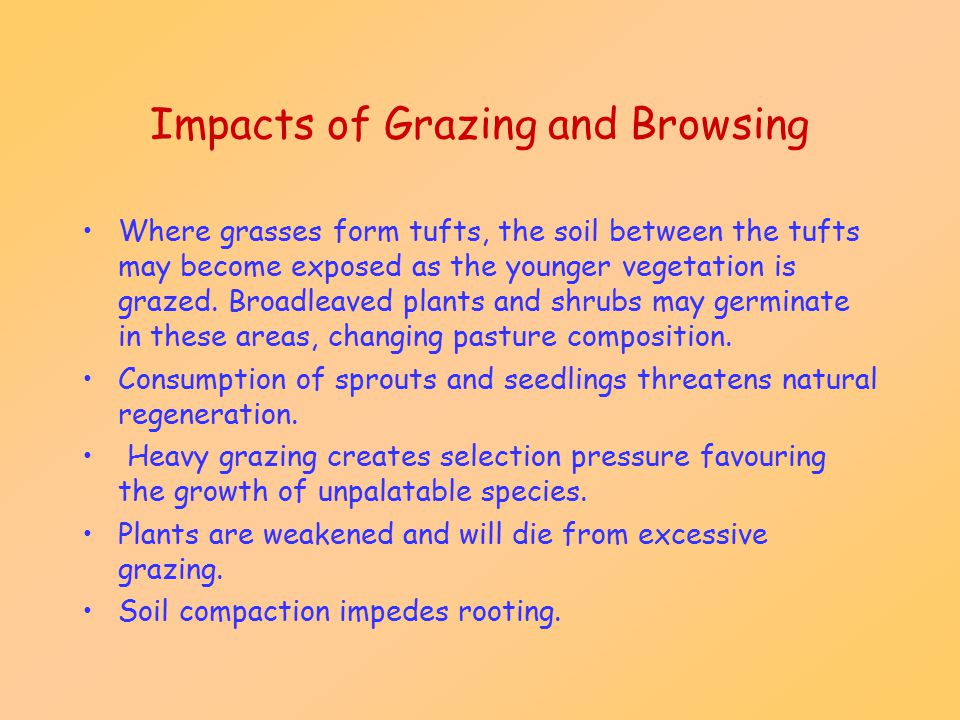 Impacts of Grazing and Browsing