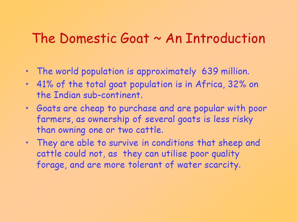 The Domestic Goat ~ An Introduction