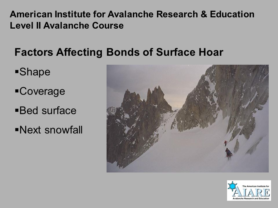 Factors Affecting Bonds of Surface Hoar Shape Coverage Bed surface