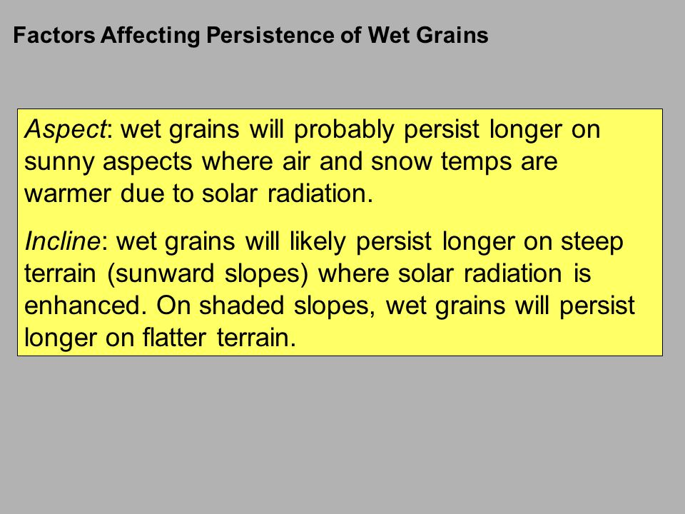 Factors Affecting Persistence of Wet Grains
