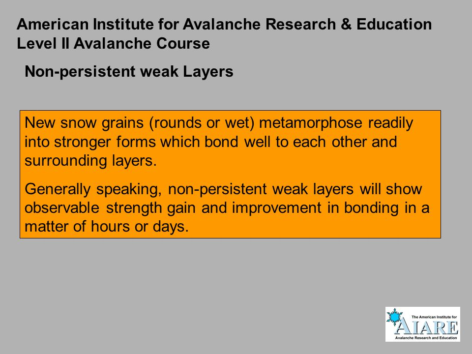 American Institute for Avalanche Research & Education