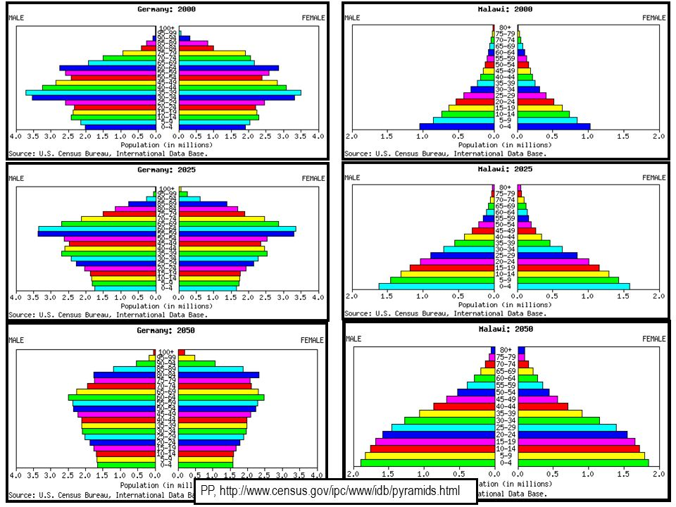 PP, http://www.census.gov/ipc/www/idb/pyramids.html