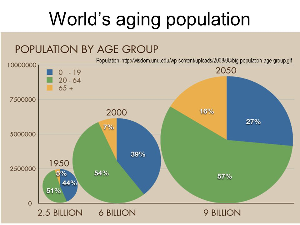 World's aging population