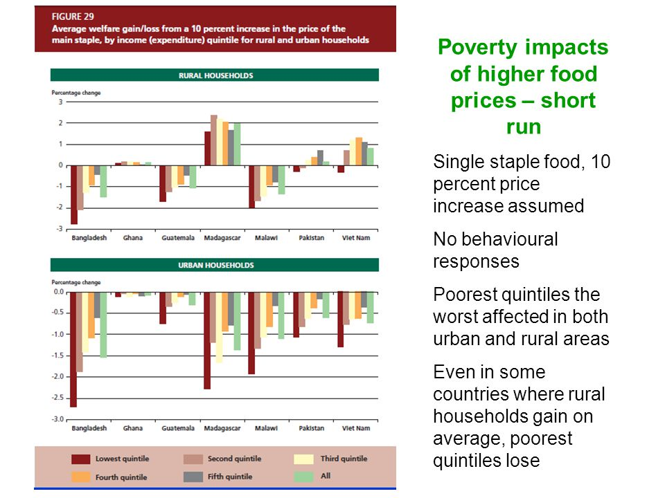 Poverty impacts of higher food prices – short run