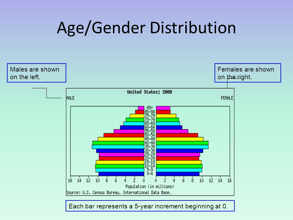 Age/Gender Distribution