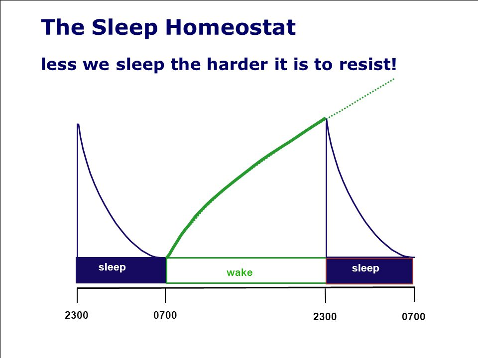 The Sleep Homeostat less we sleep the harder it is to resist!