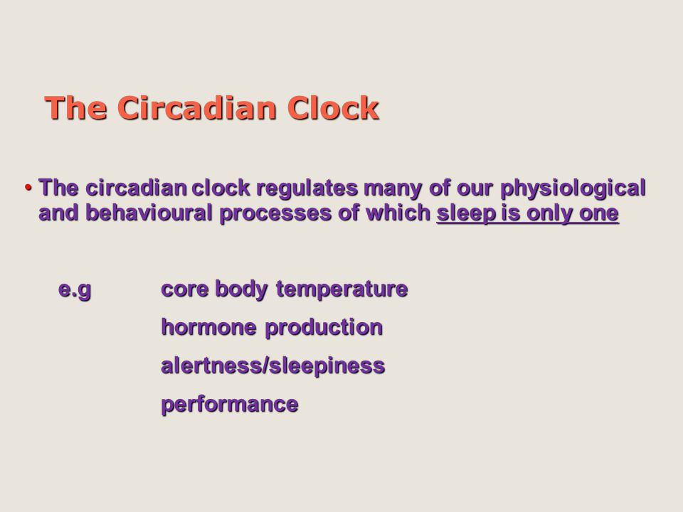 The Circadian Clock The circadian clock regulates many of our physiological and behavioural processes of which sleep is only one.