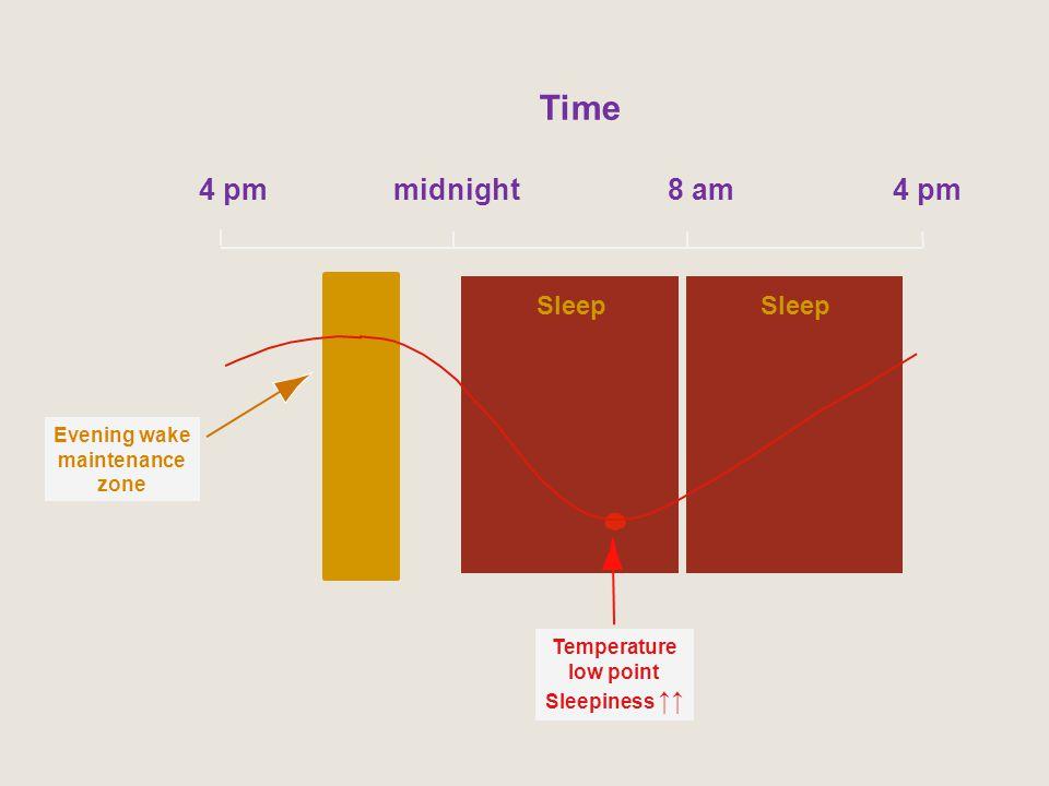 Time 4 pm midnight 8 am 4 pm Sleep Sleep Evening wake maintenance zone