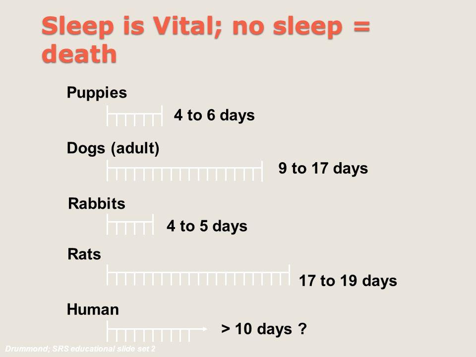 Sleep is Vital; no sleep = death