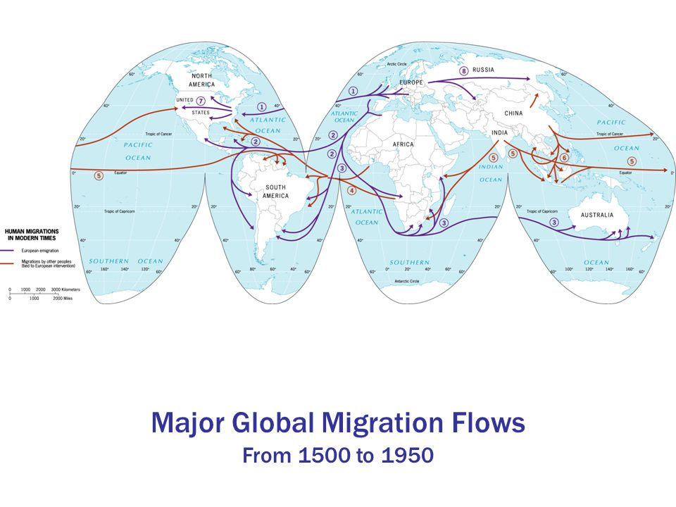 Major Global Migration Flows