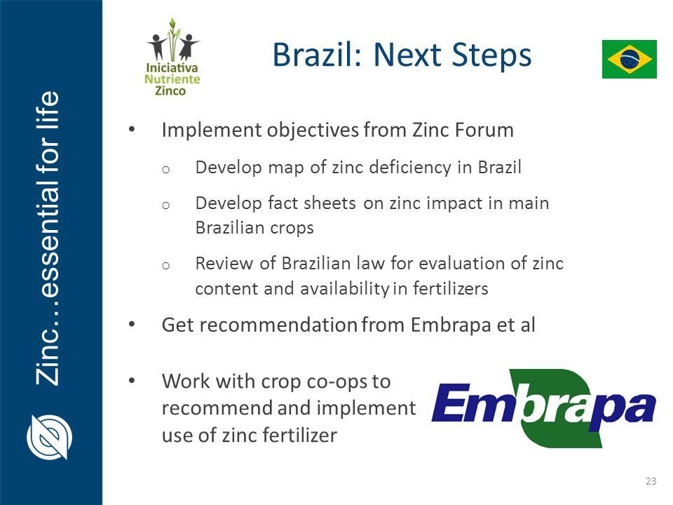 Brazil: Next Steps Implement objectives from Zinc Forum