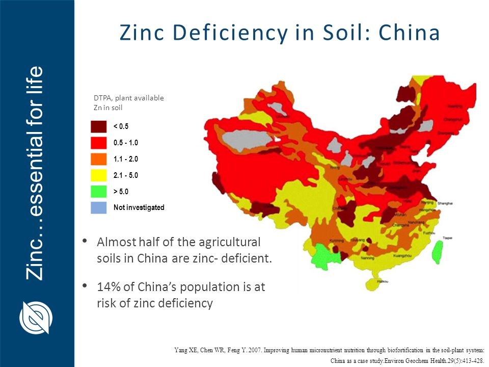 dr andrew green director zinc nutrient initiative ppt ForSoil Zinc Deficiency