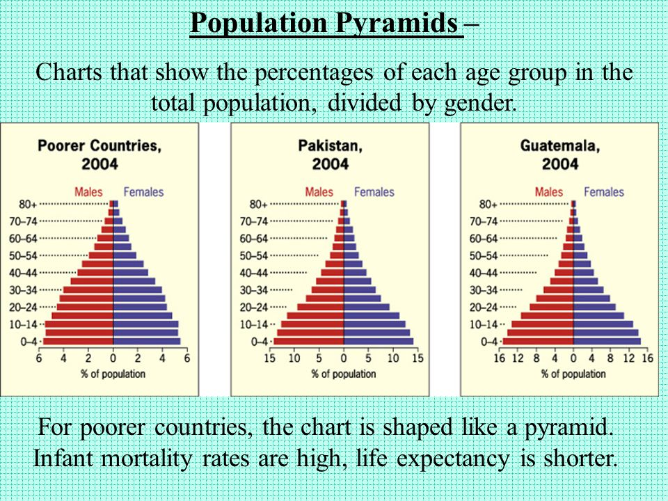 Population Pyramids – Charts that show the percentages of each age group in the total population, divided by gender.