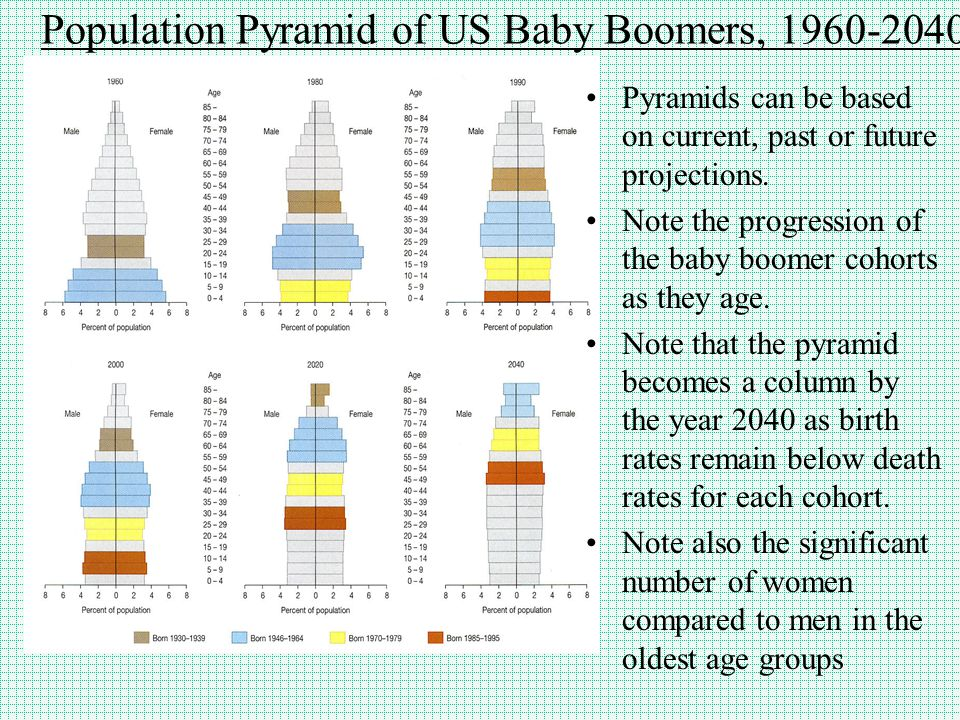 Population Pyramid of US Baby Boomers, 1960-2040