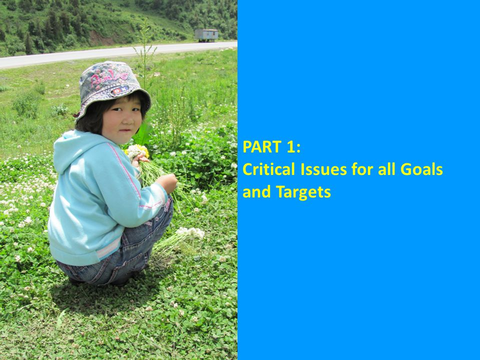 PART 1: Critical Issues for all Goals and Targets