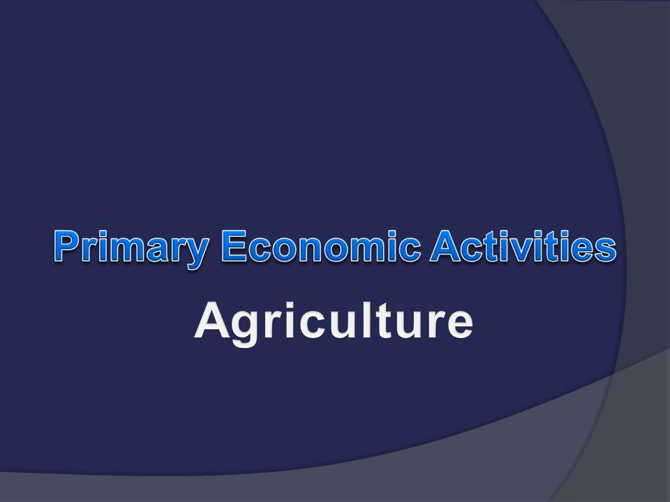 Primary Economic Activities