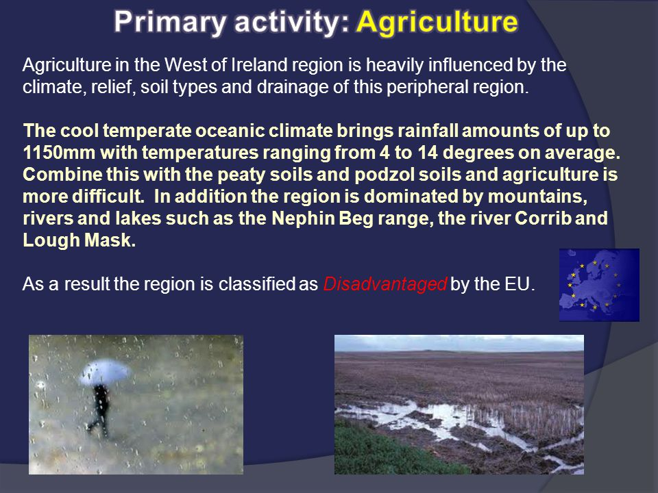 Primary activity: Agriculture